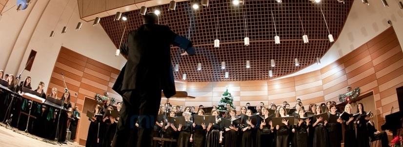 """Orchestra de cameră a Filarmonicii """"Oltenia"""" din Craiova în turneu în Austria"""