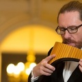 Concert Nicolae Voiculeţ la Viena