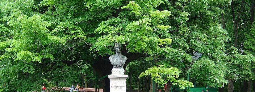"""""""Eminescu und Wien"""""""