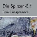 """Lansarea antologiei bilingve """"Die Spitzen-Elf / Primul unsprezece"""""""