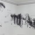 Raluca Popa expune la muzeul Leopold din Viena