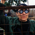 """""""După-amiaza unui torţionar"""" de Lucian Pintilie la Cinemateca ICR Viena"""