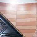 Recital al pianistei Adela Liculescu la Mozarthaus Vienna